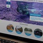 WWF CYCLADES LIFE NEW WEBSITE